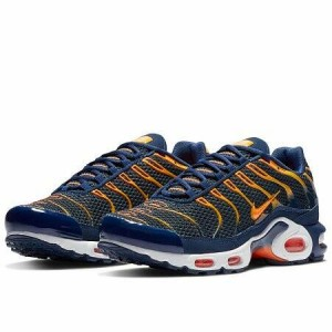 AIR MAX PLUS TN (Ц..