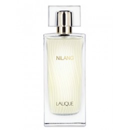 NILANG (L) TEST 100ML EDP