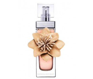 WILDBLOOM LADY EDP 100 ML TESTER